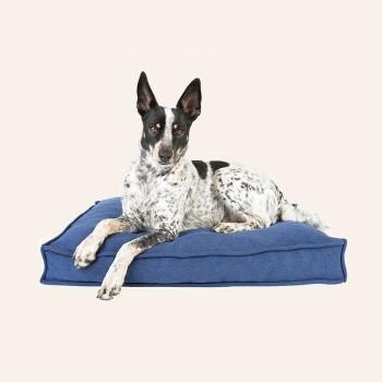 SLEEPY HEAD dog bed