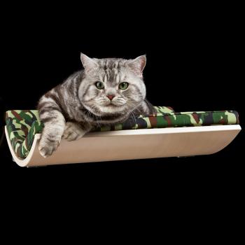 Chill Camo Green cat shelf