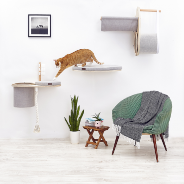 ➡️Catification, or a cat's paradise in your home