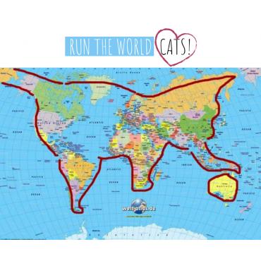 ➡️ Dzięki Wam nasze produkty dotarły już do kotów z 50 różnych krajów!