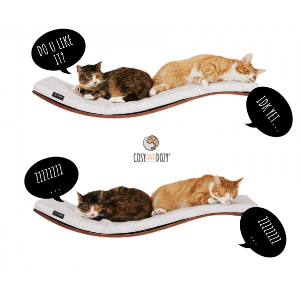 ➡️ If cats didn't exist - our company wouldn't exist. (The history of two designers)